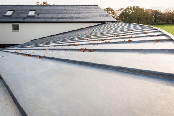 Elzinc natural curve roof