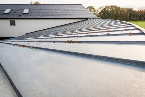 Elzinc natural curve roof